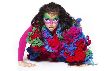 Björk et Michel Gondry : nouveau projet