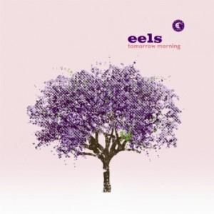 eels_tomorrow-morning