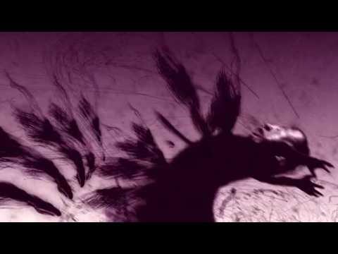 Yeah Ghost : le nouvel album de Zero 7