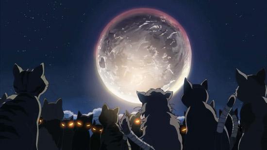 Neko No Shukai, le court métrage de Makoto Shinkai