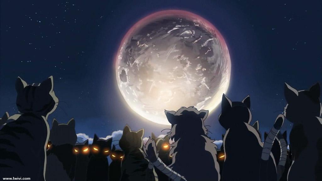 Visuels de Anikuri 15, Neko no Shukai de Makoto Shinkai